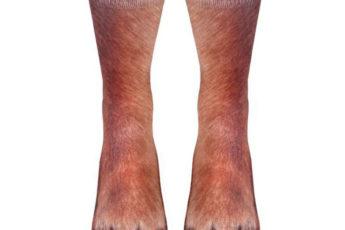 Реалистичные носки под лапы собаки