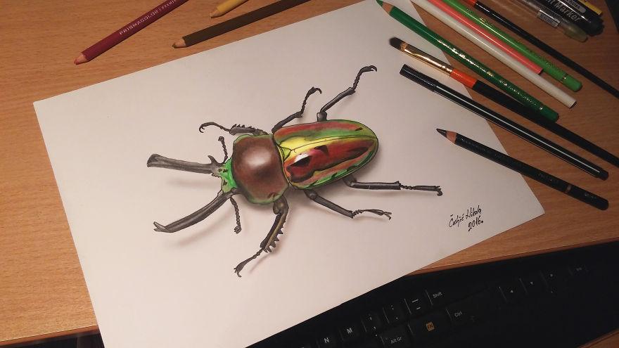 Радужный жук на бумаге в 3D