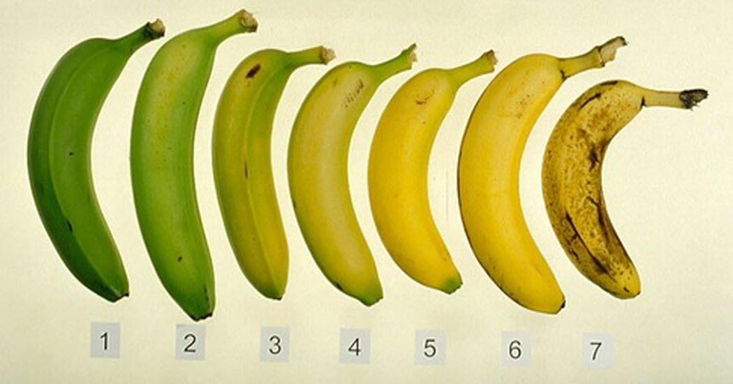 kak-vy-dumaete-kakie-banany-poleznee-vsego-1