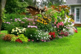 Цветник в саду своими руками радует взгляд