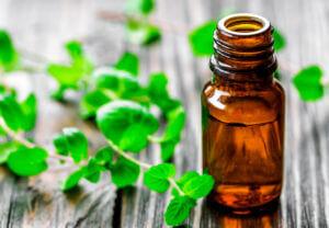 Польза ментолового масла