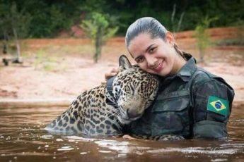 Превью спасение ягуара
