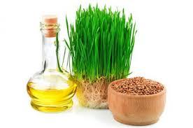 Влияние масла зародышей пшеницы на густоту ресниц