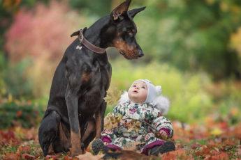 Как завести щенка ребенку