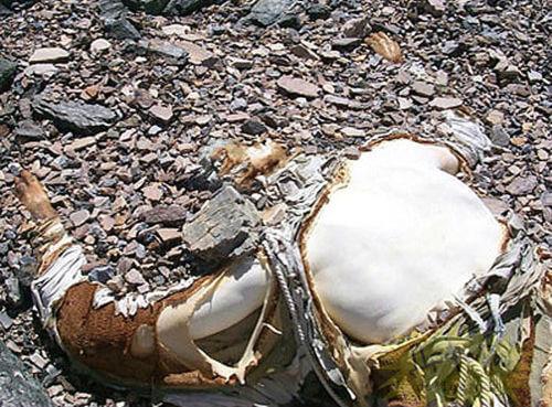 На Эвересте тела умерших альпинистов используют как вехи для ориентира