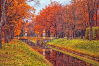 Настроение — золотая осень