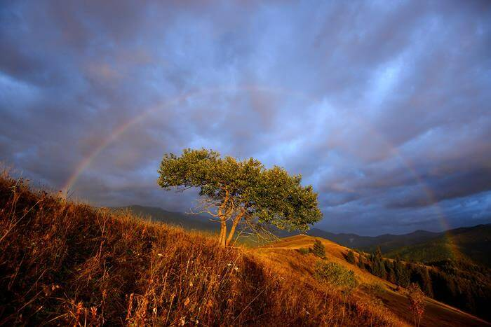 Настроение — золотая осень, 15 превосходных фотографий