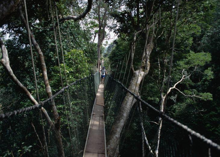 mosty-kotorye-pugayut-mnogih-turistov-4