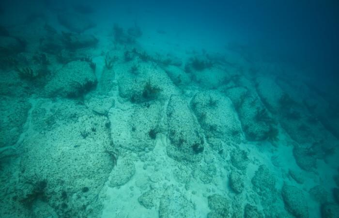 10-neveroyatnyh-veshhej-kotorye-byli-obnaruzheny-v-okeanskih-glubinah-5