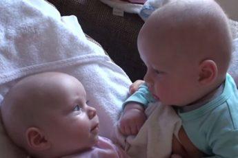 Беседа двух младенцев завладела Интернетом!
