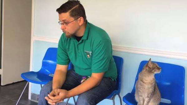 8 долгих лет этот парень искал своего украденного пса и… нашел