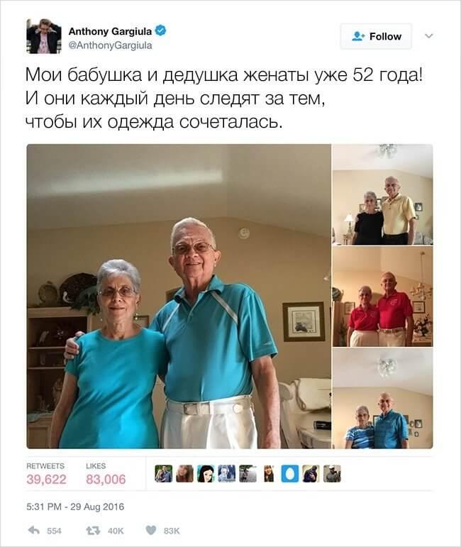 15-tvitov-12
