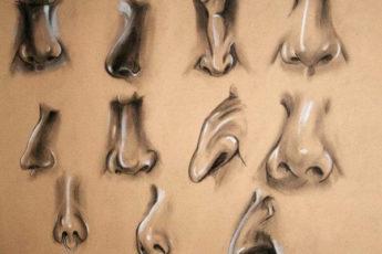 Что форма носа может сказать о вашей личности?