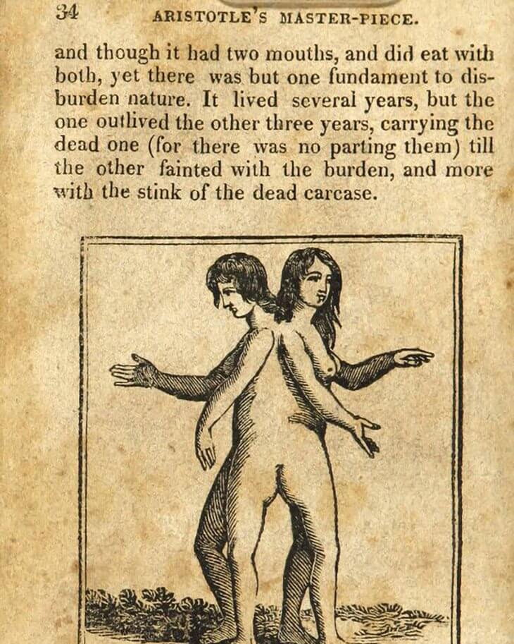 raskryto-soderzhanie-rukovodstva-po-seksu-xviii-veka-6