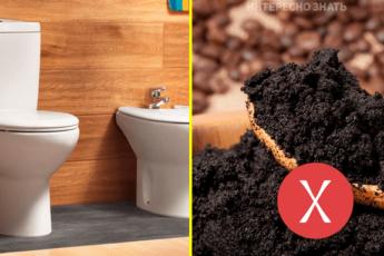 9 продуктов, которые ни в коем случае нельзя смывать в унитаз