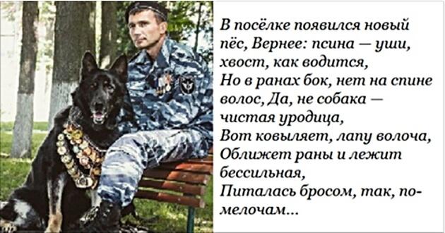 УРОДИЦА, Александр Юфик