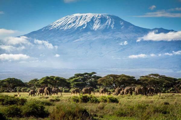 Мы были где-то там, в безвременье: рассказ о восхождении на Килиманджаро