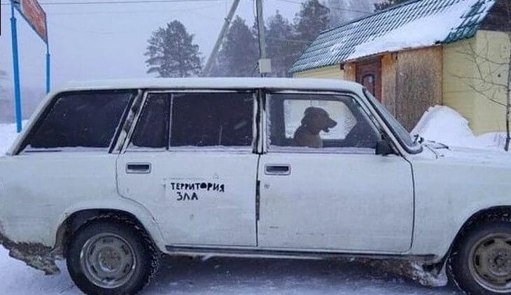 https://luxalux.ru/nadorvat-zhivot-novaya-portsiya-smeshnyh-foto-iz-serii-tolko-v-rossii