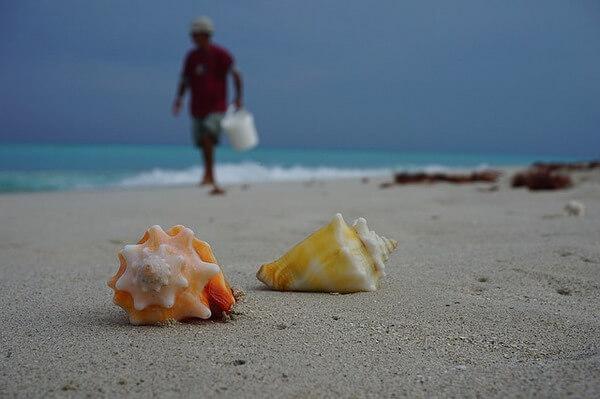 Что нужно знать, отправляясь в путешествие на Кубу?