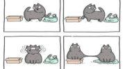 Забавные комиксы о повседневных ситуациях: Анастасия Иванова, художница из Челябинска, добавляет в них щепотку абсурдного юмора