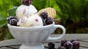 Мороженое, готовим своими руками в домашних условиях